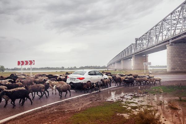 Тестируем Ситроен C4 Седан российской сборки