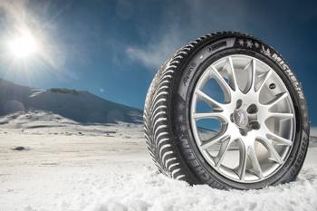 Помидоры без рассады под зиму